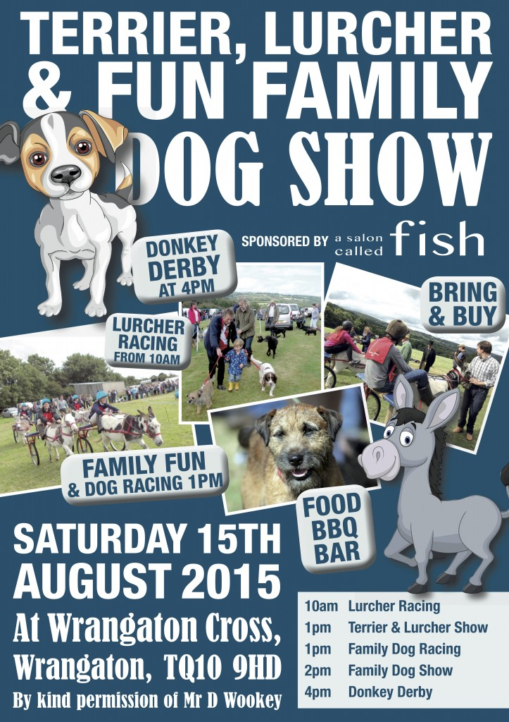 a salon called fish blog archive family fun donkey derby