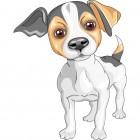 Wrangaton Dog Show
